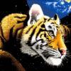 №10 Тигр планета 31-1539-НТ (2010-04) оригинал