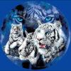 №57 Тигры 32-2499-НТ (2011-04) оригинал
