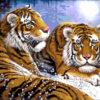 №207 Пара тигров 39-3072-НП (2014-05) оригинал