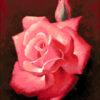 №227 Алая роза 36-2622-НА (2014-10) оригинал