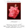 №227 Алая роза 36-2622-НА (2014-10) титул