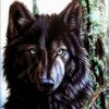 №232 Канадский волк 33-2576-НК (2014-11) оригинал