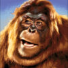№235 Огненная обезьяна 36-1435-НО (2014-12) оригинал