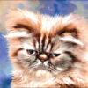 №237 Персидский кот 42-2116-НП (2014-12) оригинал