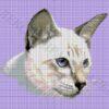 №12 Кошка 17-0936-НКЧ (2010-05) сетка