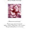 №19 Цветочная фантазия 23-2157-НЦ (2010-07) титул