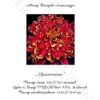 №31 Хризантема 36-2963-НХ (2010-10) титул