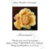 №52 Желтая роза 29-2116-НЖ (2011-03) титул