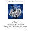 №57 Тигры 32-2499-НТ (2011-04) титул