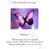 №59 Бабочка 29-2400-НБ (2011-05) титул