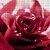 №76 Желание 34-0825-НЖ (2011-09) сетка