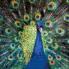 №95 Жар-птица 45-2442-НЖ (2012-02) сетка