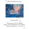 №96 Зимняя ночь 33-2596-НЗ (2012-02) титул