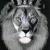 290 Король лев 17-2405-НК картина