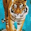 №364 Тигр на прогулке 38-3680-НТ (2019-10) сетка