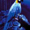 №372 Голубой Ара 45-2944-НГ (2020-01) превью