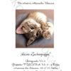 №393 Крошка кот 31-0784-НК (2020-08) титул нем