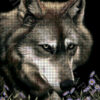 №407 Волк в астрах 37-2668-НВ (2021-01) сетка