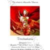 №409 Повелительница драконов 47-6724-НП (2021-01) титул нем