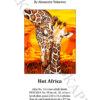 №414 Жаркая Африка 30-2622-НЖ (2021-03) титул анг