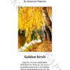 №417 Золотая береза 38-2806-НЗ (2021-04) титул анг